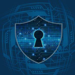 Cybersecurity Defense Shield